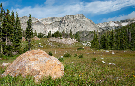 Mountain Clearing:  A rocky meadow opens at the base of the Snowy Range in southern Wyoming.