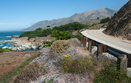 Pacific Coast Highway:  California Highway 1 curves along a mountainous shoreline amid a variety of plants that grow in the dry coastal climate south of Carmel. Stok Fotoğraf - 50477458