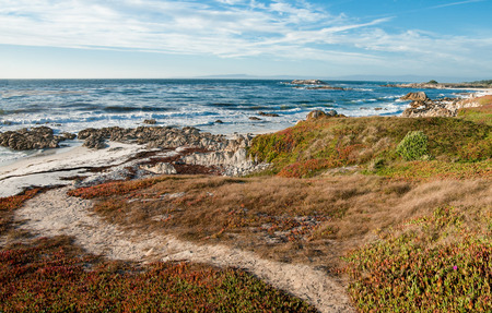 foot path: Beach Path:  A narrow foot path leads across a grassy hillside to a rocky beach on the Monterey Peninsula.