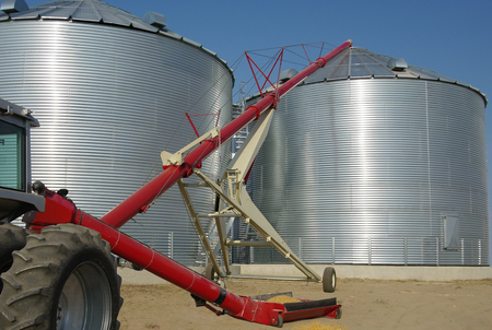 Storing Grain:  A tractor-driven auger transfers grain from a tray at ground level to the top of a storage bin on a farm in South Dakota. Stock Photo