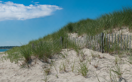 Sand Dune Erosion Fence:  A wooden picket fence holds wind-blown sand and allows grass to take root in dunes on the shore of Block Island, RI.