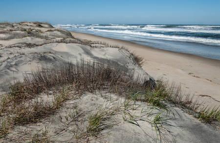 Dune Shoreline in North Carolina:  Large sand dunes overlook the beach at Cape Hatteras National Seashore.