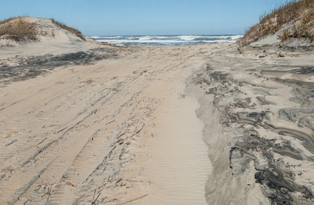 Off Road Beach Access:  A clearing for recreational vehicles passes between sand dunes and opens to the beach at Cape Hatteras National Seashore.