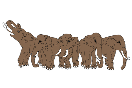tusk: Drawing of group of five elephants on the isolated background
