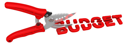 deficient: Pruner cuts the word BUDGET Stock Photo