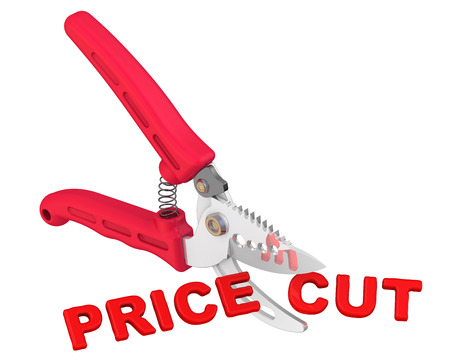 price cut: The concept of price cut Stock Photo