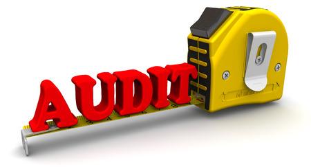 auditoria: Criterio mide la palabra AUDITOR�A