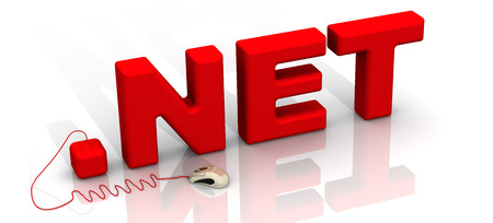 International domain .net