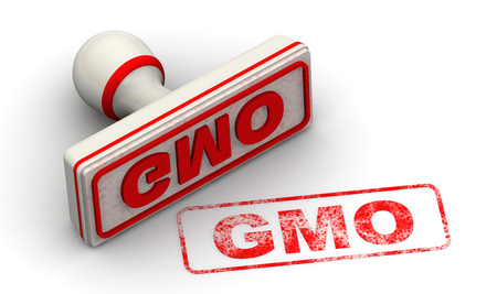 genetically modified organisms: GMO. Seal and imprint