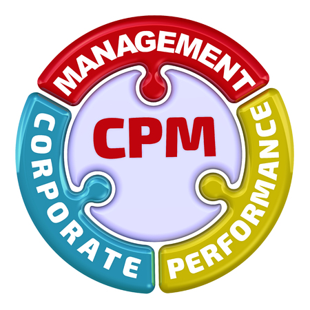 CPM. Corporate performance management. The check mark in the form of a puzzle
