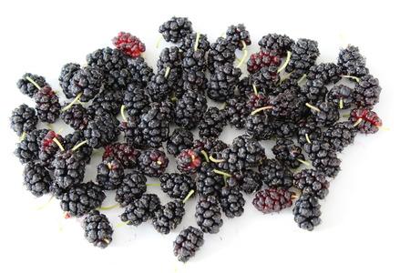 black: black mulberries Stock Photo