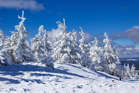zimowy krajobraz w Fichtelberg, Oberwiesenthal, Niemcy