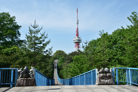 Utsunomiya Tower, adventure bridge