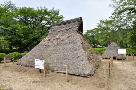 Pit dwelling ruins Hoshino
