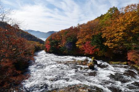 Ryuzo No Taki Autumn leaves Nikko city Tochigi prefecture 版權商用圖片