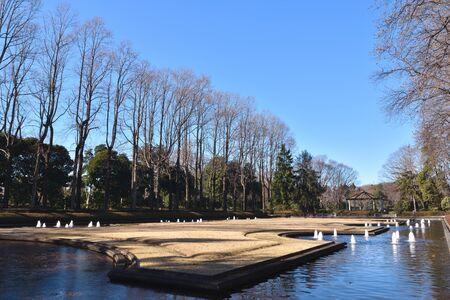 Tochigi Prefectural Central Park in winter