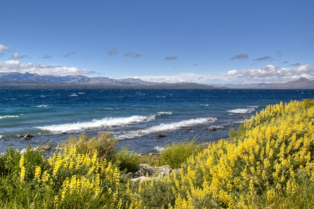 View over the Nahuel Huapi lake in Bariloche, Argentina Banco de Imagens