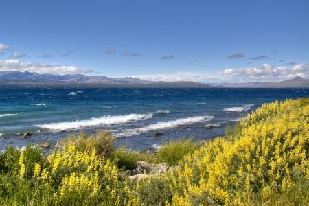 nahuel huapi: View over the Nahuel Huapi lake in Bariloche, Argentina Stock Photo