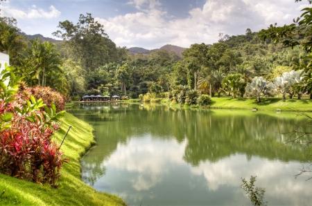 Lake in Inhotim, Brazil