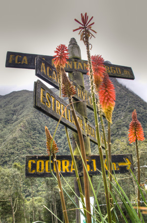 Road sign at the valley of Cocora near Salento, Colombia
