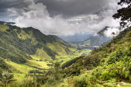 The valley of Cocora near Salento, Colombia