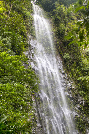 fortuna: The La Fortuna waterfall near the Arenal national park in Costa Rica