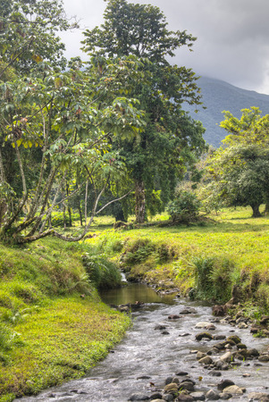 fortuna: A river at the La Fortuna waterfall near the Arenal national park in Costa Rica Stock Photo