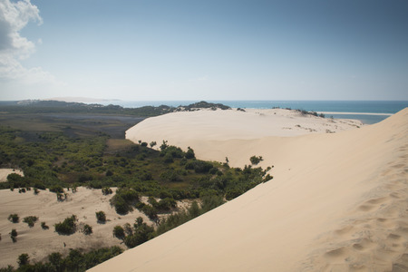 Dunes and forest near the beach on the Bazaruto Islands near Vilanculos in Mozambique Фото со стока