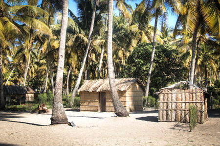 african village: African village with typical straw huts between palm trees in Praia do Tofo in Inhambane, Mozambique Stock Photo