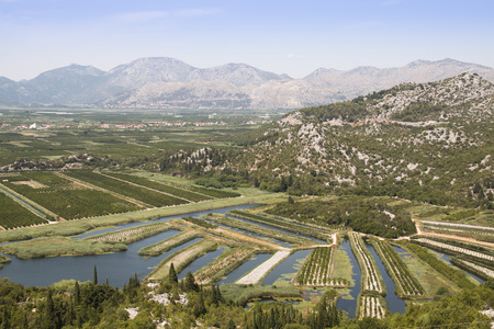 biological vineyard: View over the vineyards of the Dubrovnik Riviera, Croatia Stock Photo