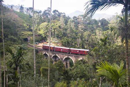 The famous Nine Arches bridge just outside the touristic village Ella in Sri Lanka