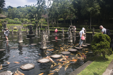 TIRTA GANGGA, BALI - JANUARY 2018: Tirta Gangga is one of the famous water palaces in eastern Bali, the most touristic island of Indonesia Редакционное