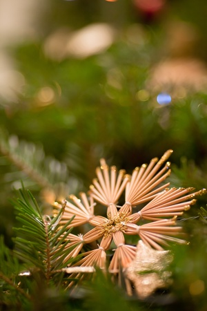 Straw star on Christmas tree background photo