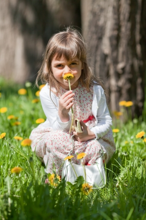 Little girl sitting on a grass with dandelions and sniffing flower photo