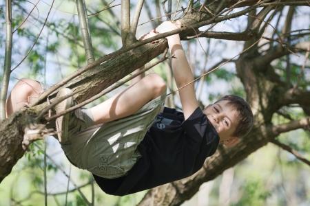 Jeune garçon suspendu à une branche dans un arbre, ensoleillé, jour