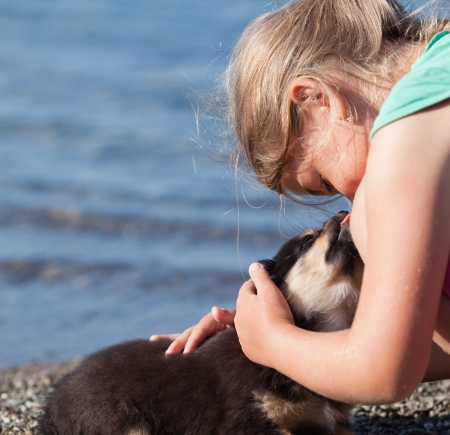 Little puppy licks the nose of a nine-year-old girl. Close up