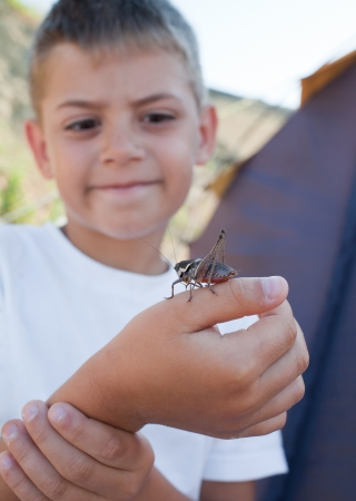 Young boy is looking at large grasshopper or locust on his finger