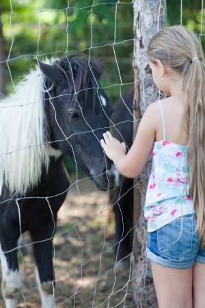 little girl touching pony photo