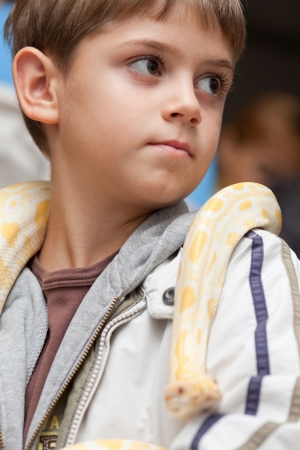 Close-up of boy holding albino python on her shoulders Stock fotó