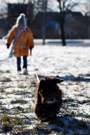 Little girl and miniature schnauzer for a walk outdoors photo