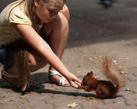 Cute little girl feeding squirrel at park photo