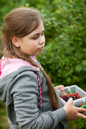 Young girl harvesting berries in the garden photo