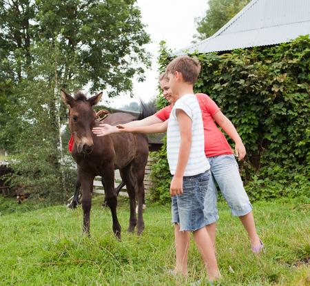 okşayarak: Atı okşayarak Çocuklar Stok Fotoğraf