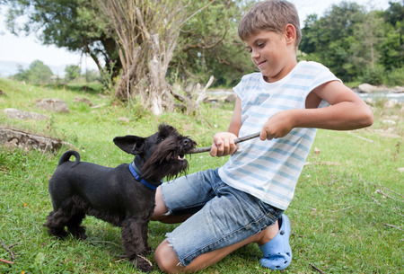 pre adolescent boy: Young boy having fun with his dog outdoors Stock Photo