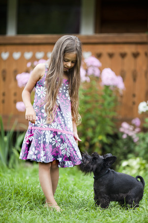 Little girl playing with her miniature schnauzer in backyard photo