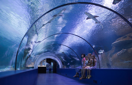 Family inside the tunnel of the oceanarium at the aquarium photo