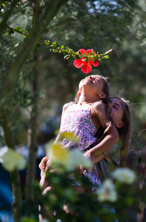 two person only: Two little girl smelling flower (hibiscus) in garden Stock Photo