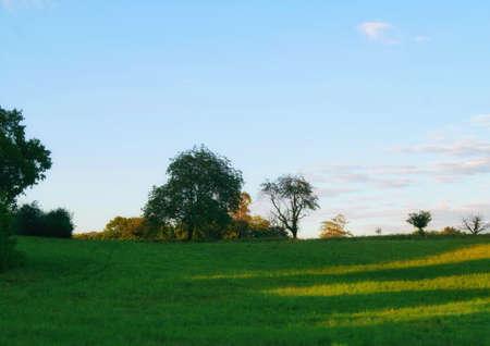 Beautiful landscape view of green nature. Stock fotó - 155011701