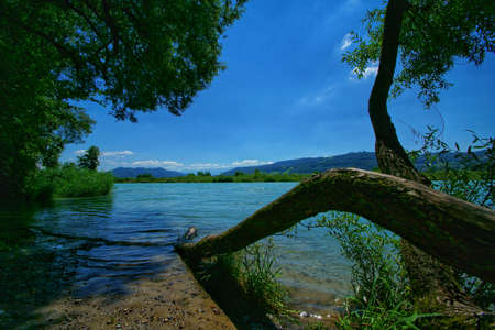 beautiful landscape of the tranquil aare river in switzerland Stock fotó