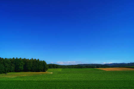 beautiful landscape view of the green fields in the countryside in jegenstorf, switzerland